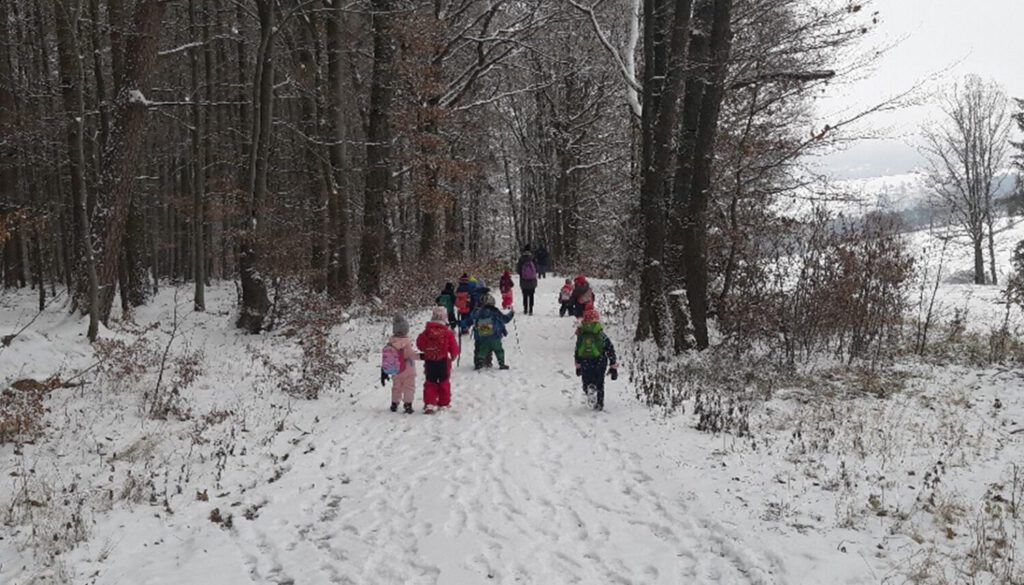 waldtag-im-schnee